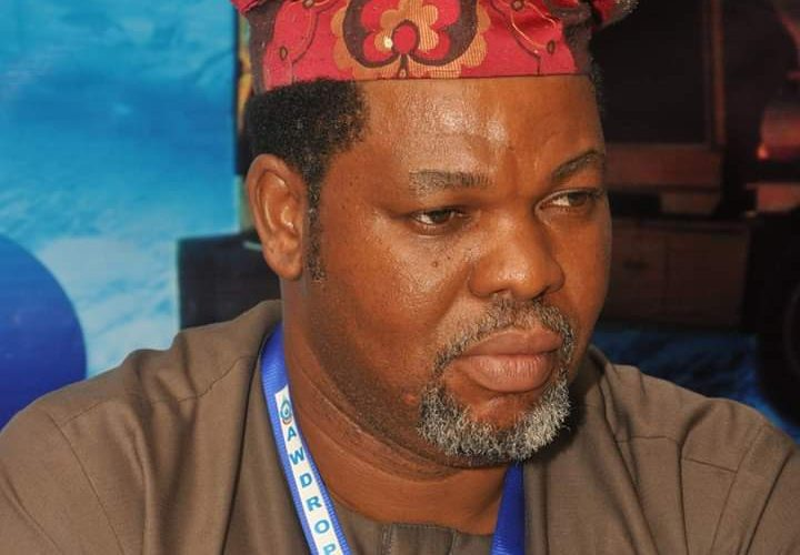 Post Covid 19: Provide Collateral Free Loans To SME's, Ale Tells FG