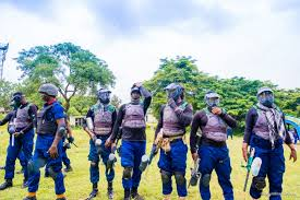 Oyo NSCDC Dislodges Unknown Herders with 400 Cows From Akinyele